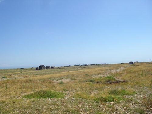 Dungeness-sea-3.jpg