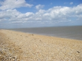 Dungeness-sea-1.jpg