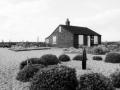Prospect Cottage garden.jpg